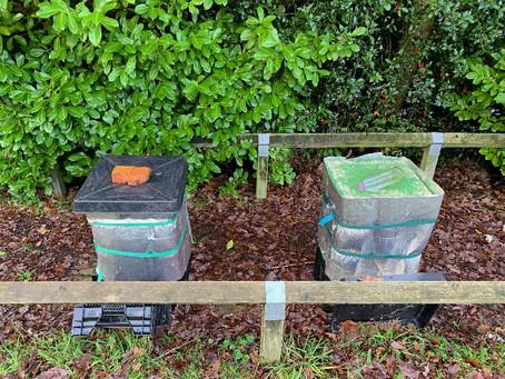 ミツバチたちの冬仕度ができました。これであったかいはず。