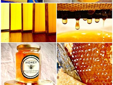今年の蜂蜜づくりの過程を、「Honey of year 2020」としてコラージュにしてみたよ。