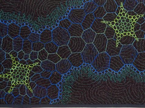Frutex-amphibius detailw