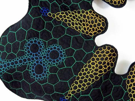 Frutex-acutifolius detail