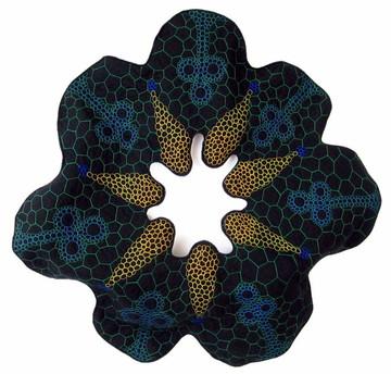 Frutex-acutifolius