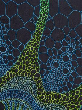Frutex-reticulatus detail
