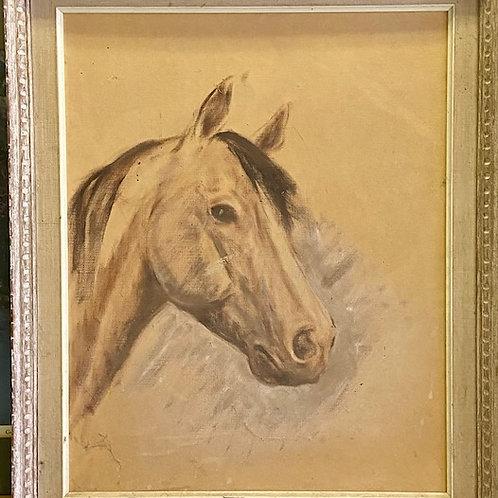 Auction- Horse Portrait