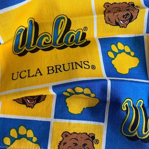 College- UCLA