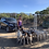 Thumbnail: BBQ FOR SFH MEMBERS-SFH Kennels  October 3, 2020