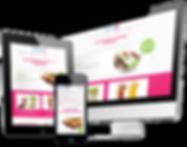 Website Design Transparent.png