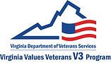 DVSV3_Logo.jpg