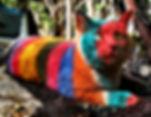 Rainbow Willow.jpg