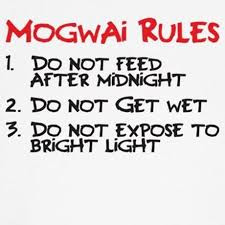 Of Mogwai and Dogs