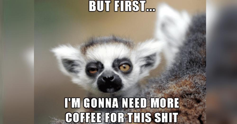 coffeelemur