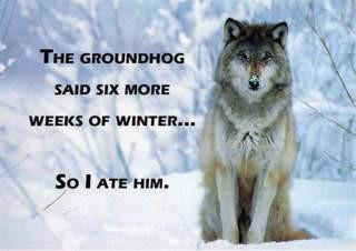 Six Weeks of Winter