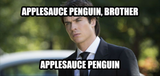 Applesauce Penguin, Brother