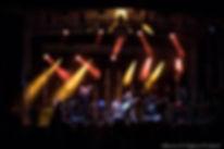 Photo_concert_Malted_Milk_Still_Bass_Fes
