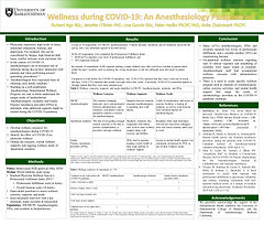 Wellness during COVID-19: An Anesthesiologist Perspective