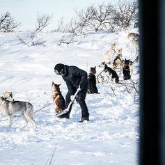 Fulufjället Hundspann20.jpg