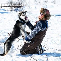 Fulufjället Hundspann60.jpg