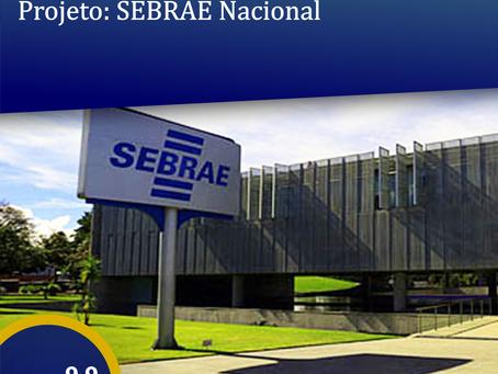 Trabalhos Realizados: SEBRAE Nacional