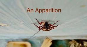 AN APPARITION.jpg