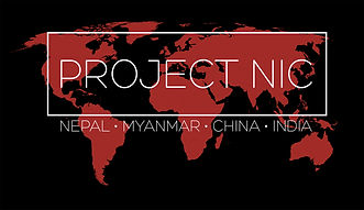 project nic logo website red 3.jpg