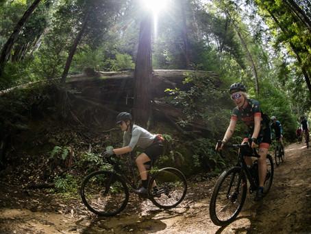 Exploring the Santa Cruz Mountains with Juliana Bicycles