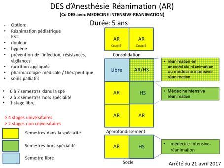 Option et Formation Spécialisée Transversale pour le DESAR
