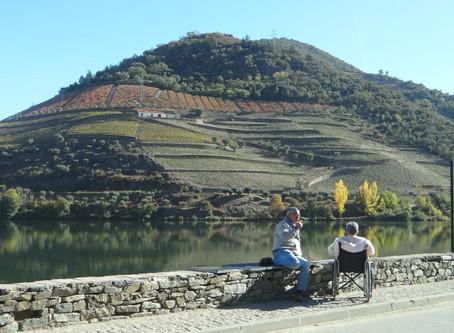 Portugal: Um dia no Douro