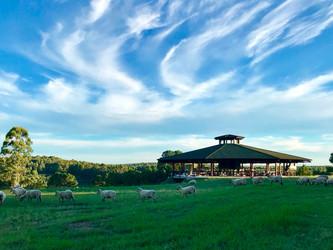 Novembro é mês de Vinho e Turismo no Uruguai