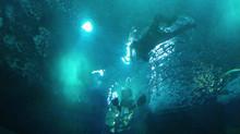 AquaRIO: COMO É O MERGULHO NO MAIOR AQUÁRIO DA AMÉRICA LATINA