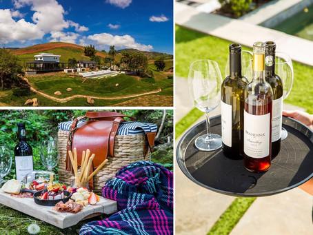 Vinho e Gastronomia em Villa Santa Maria