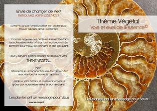 theme vegetal