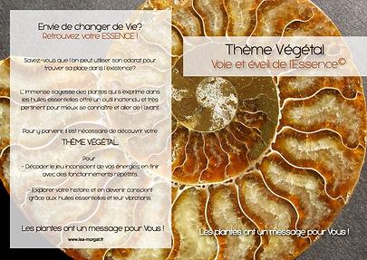 theme vegetal-3.jpg