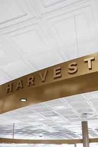 Harvest_IMG_3758 copy.jpg