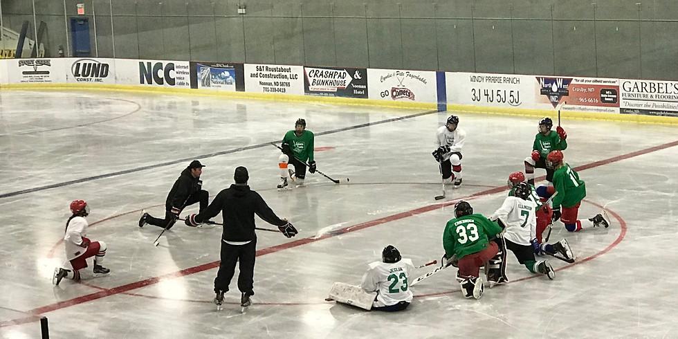 Dakota Roots Hockey School- Crosby, ND Camps (July 13-17, 2020)