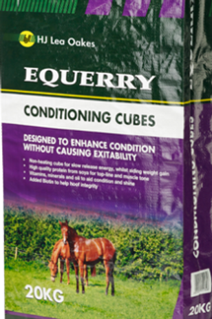 CONDITIONING CUBES