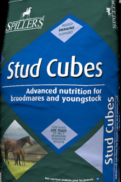 Stud Cubes