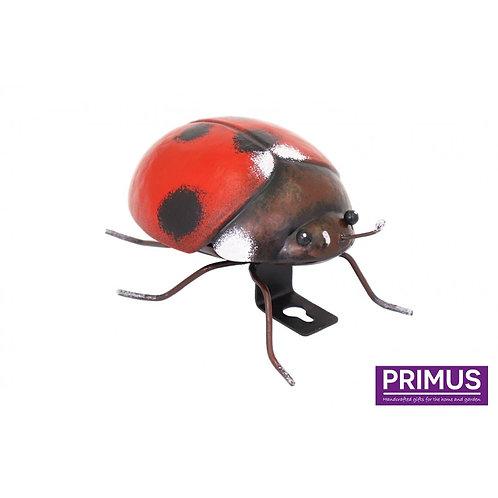 Small Metal Ladybird