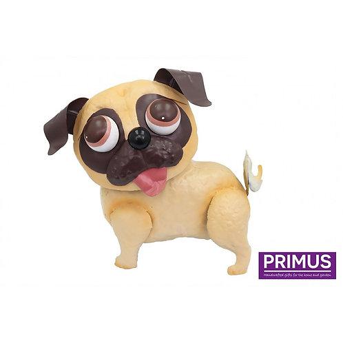 Pablo the Pug