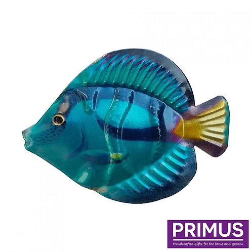 Fish Wall Art - Blue Tang