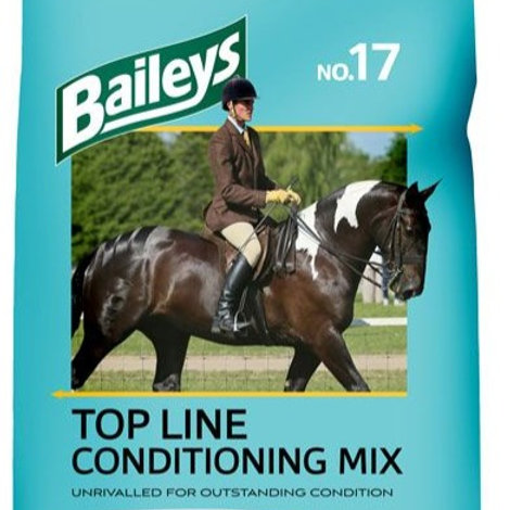 NO.17 TOP LINE CONDITIONING MIX