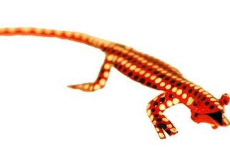 Hand Painted Tin Lizard