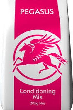 Pegasus - Conditioning Mix