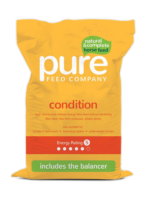 Pure Condition