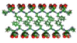 figure 1a.jpg