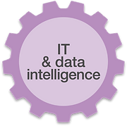IT & data intelligence.png