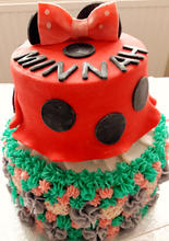 Minnie mouse, Unicorn Cake