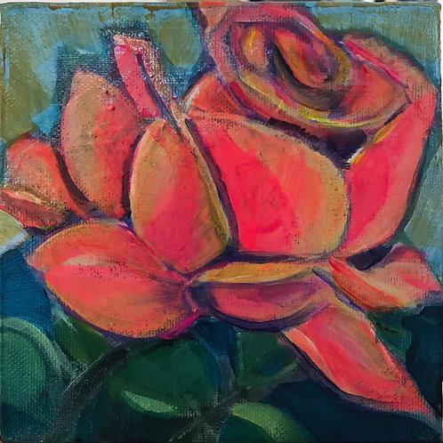 Tiny Garden Rose
