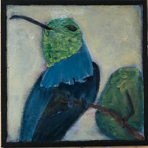 Hummingbird in Greens