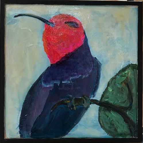 Hummingbird in Purples