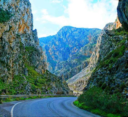 Driving through nature... Priceless