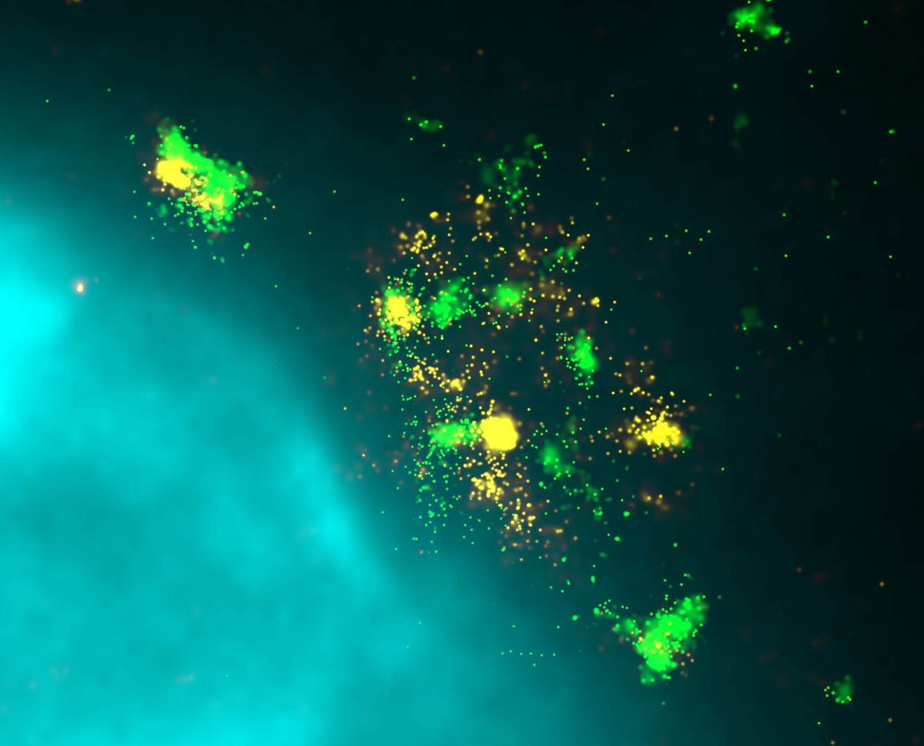 Hepatitis B Virus  infection Super resolution Image